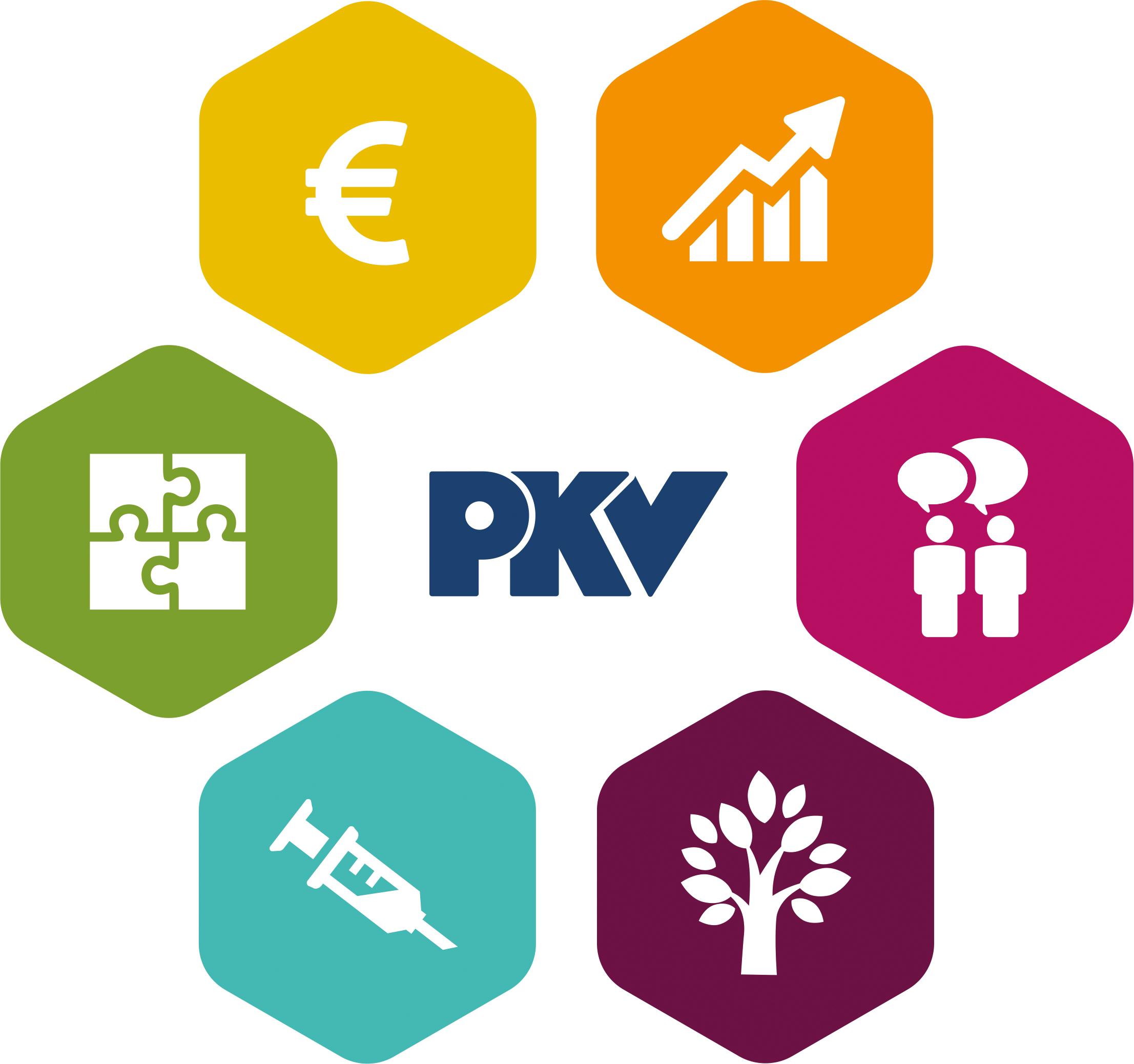 PKV Logo Fernlehrgang